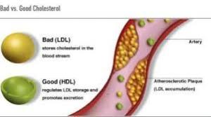 Obat Menurunkan Kolesterol Jahat